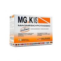 MG K VIS 14 BUSTE